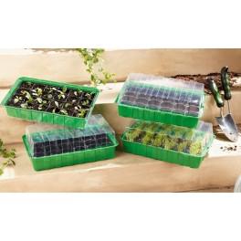 Serra da germinazione a vasetti